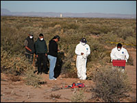 NPR photo of forensic workers in Mexico at a murder scene