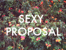 Flowers and text: Sexy Proposal