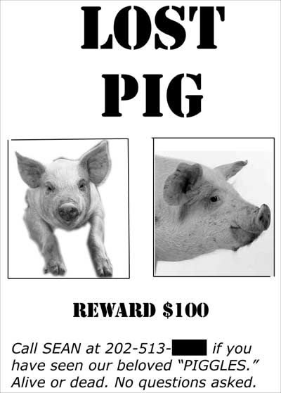 Lost Pig reward poster