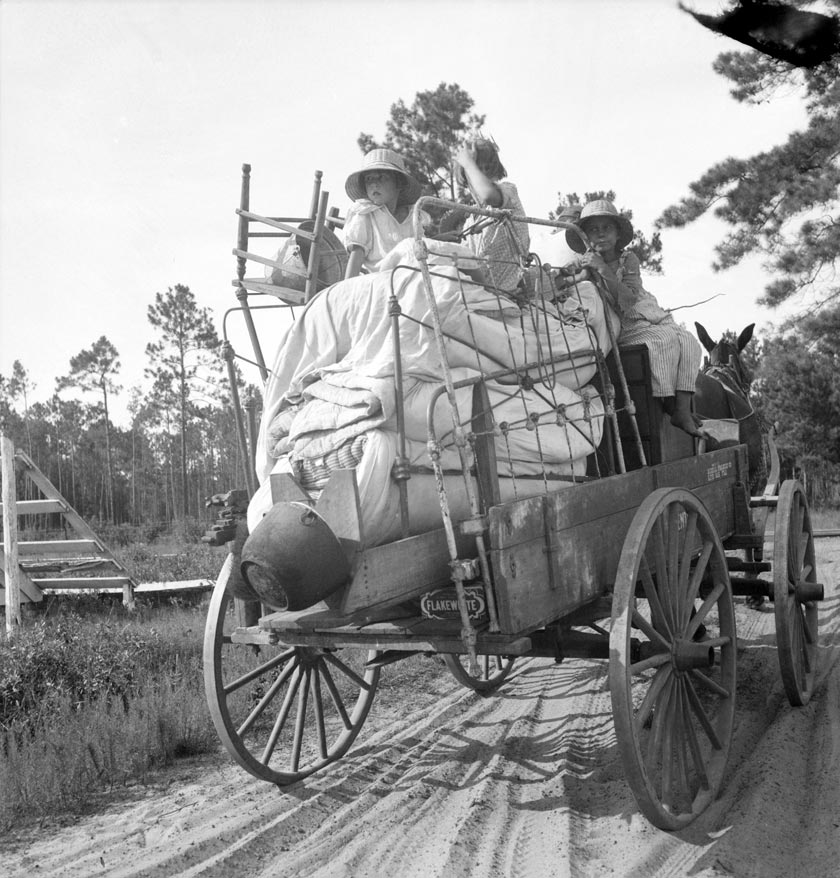 Moving day in the turpentine pine forest country. North Florida 1936; Dorothea Lange, photographer